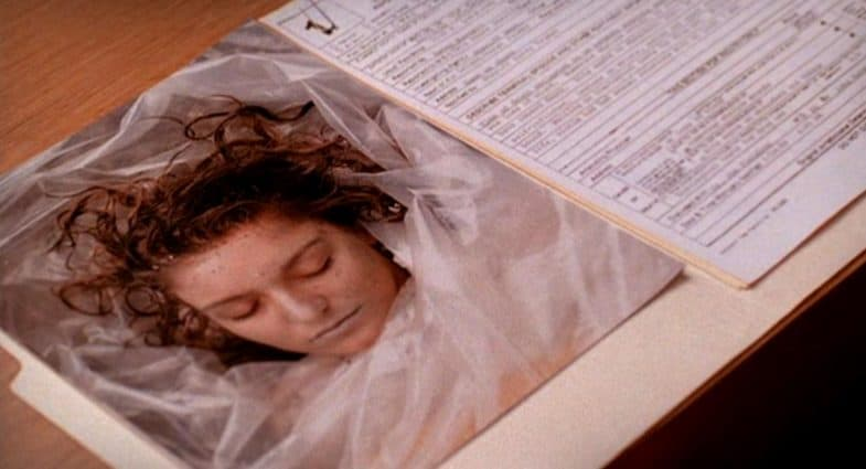 Different Versions Of Harold's & Laura Palmer's Theme In Diary Bundle
