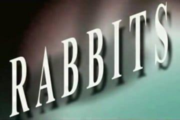 David Lynch's Rabbits