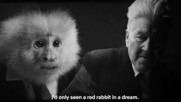 David Lynch's What Did Jack Do? on Netflix