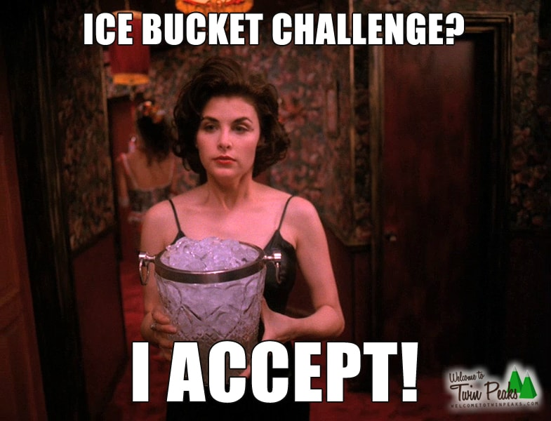 Ice Bucket Challenge by Audrey Horne