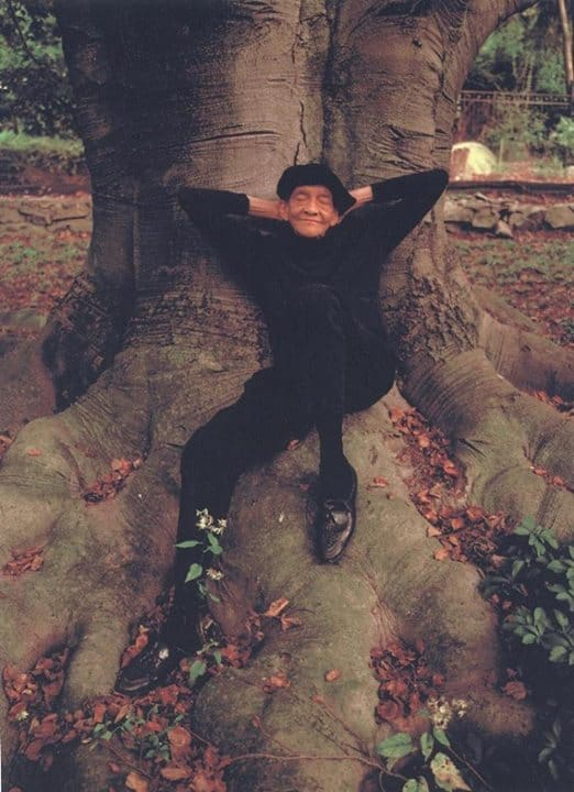 Jimmy Scott under (not a sycamore) tree