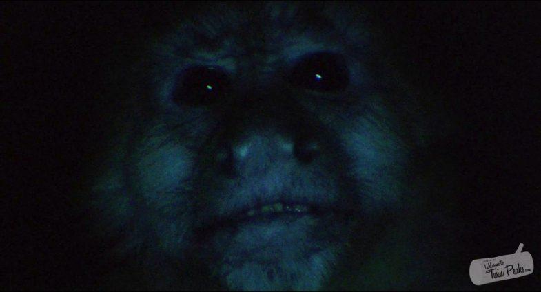Monkey (Judy) Twin Peaks: Fire Walk with Me