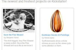 Save the pine weasel via Kickstarter