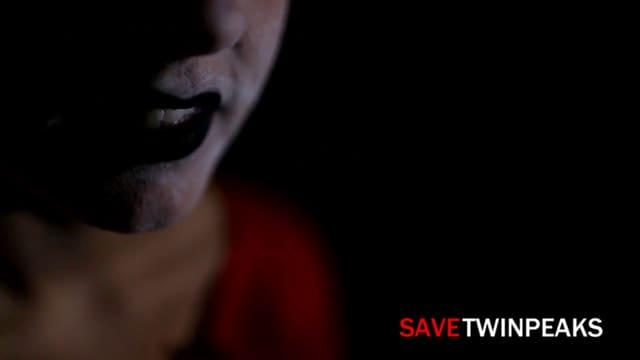 Save Twin Peaks: Mark Martucci