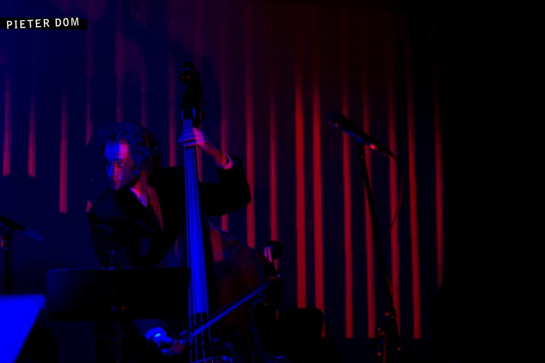 Silencio, Le Poisson Rouge, NYC by Pieter Dom (9)