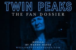 the-fan-dossier-buella-by-wendy-davis