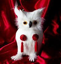 David Lynch Burlesque Owl